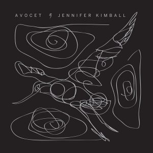 Avocet album cover